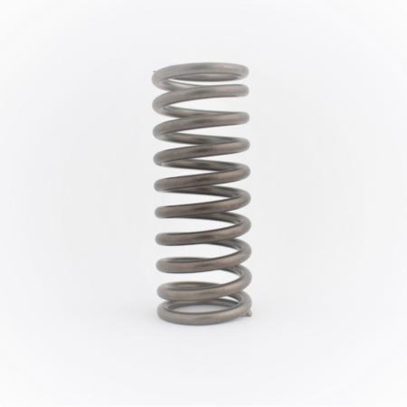 711013 Valve spring